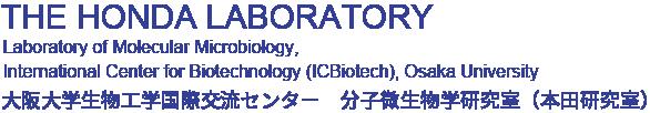 分子微生物学研究室(本田研究室)